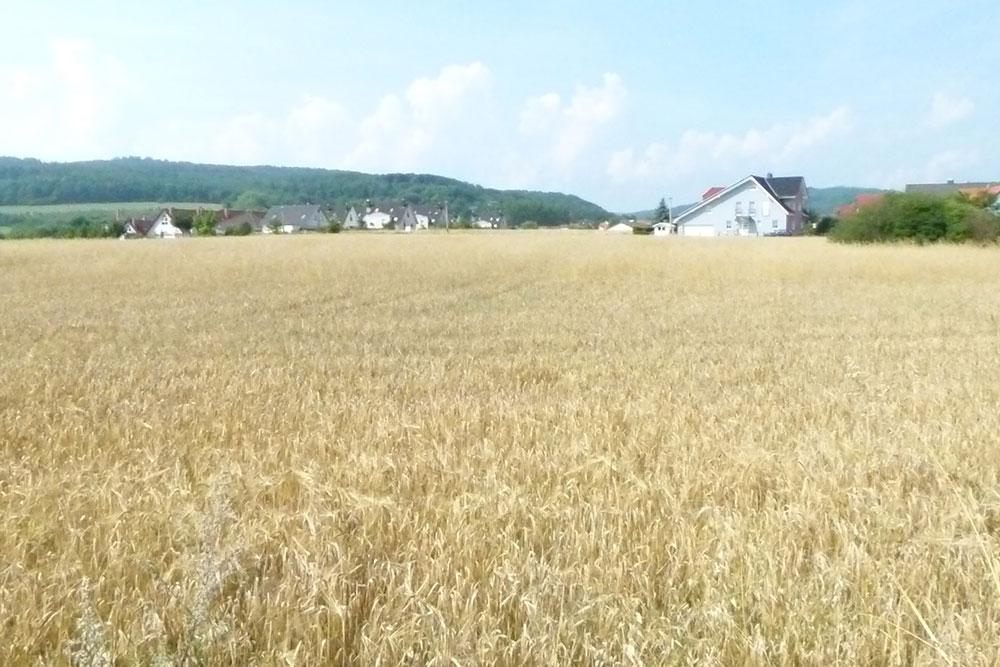 Grundstück in Arnstadt